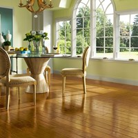 "Armstrong American Scrape 3/8"" Engineered Hardwood Flooring at Wholesale Prices"