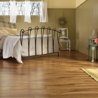 Armstrong Exotics Laminate Flooring at Wholesale Prices