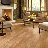 Armstrong Performance Plus Hardwood Flooring at Wholesale Prices