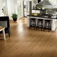 Armstrong Rustics Premium Laminate Flooring at Wholesale Prices