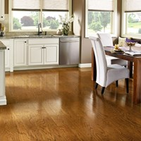 Armstrong Prime Harvest Low Gloss Hardwood Flooring at Wholesale Prices