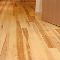 Ash Unfinished Solid Hardwood Flooring at Wholesale Prices