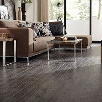 Tarkett Trends Laminate Flooring at Wholesale Prices