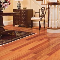 Ark Elegant Exotics Solid Hardwood Flooring at Wholesale Prices