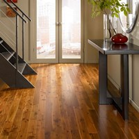 Ark French Collection Hardwood Flooring at Wholesale Prices