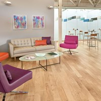 Armstrong Performance Plus Low Gloss Hardwood Flooring at Wholesale Prices