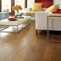 Bella Cera Clinque Terre Hardwood Flooring at Wholesale Prices
