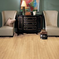 "Bruce Turlington American Exotics 3"" Birch Hardwood Flooring at Wholesale Prices"