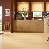 "Bruce Turlington American Exotics 3"" Maple Hardwood Flooring at Wholesale Prices"