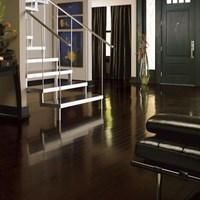 "Bruce Turlington American Exotics 3"" Walnut Hardwood Flooring at Wholesale Prices"