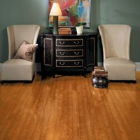 "Bruce Turlington American Exotics 5"" Birch Hardwood Flooring at Wholesale Prices"