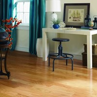"Harris Wood Harris One 3"" Hardwood Flooring at Wholesale Prices"