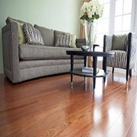 "Ribadao Brazilian Species 3 1/2"" Prefinished Hardwood Flooring at Wholesale Prices"